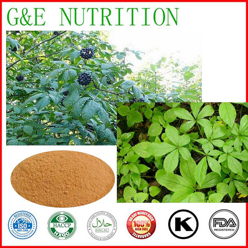 l KG Herbal Acanthopanax senticosus P,E / Plant extract Power 10:1