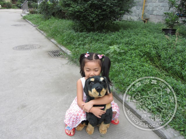 simulation animal 38 cm squatting Rottweiler dog plush toy black dog doll gift k0558(China (Mainland))