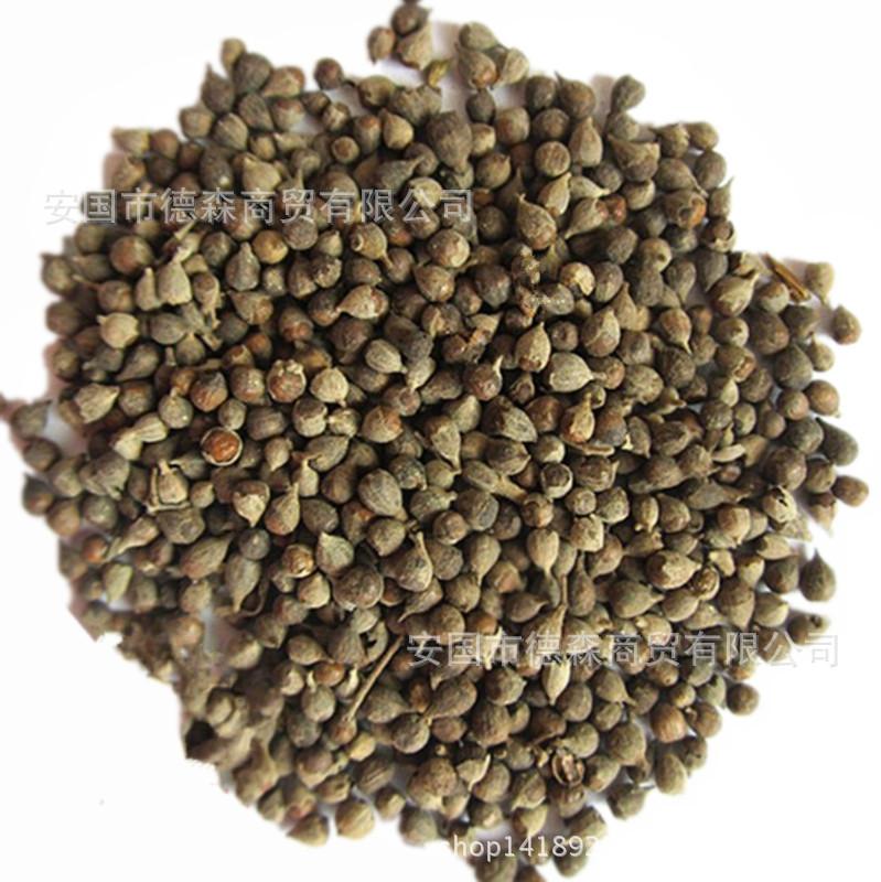 Chinese herbal medicine wholesale Vitex negundo seed Huang Jinzi Qufeng solution table Zhikepingchuan large Congyou<br><br>Aliexpress