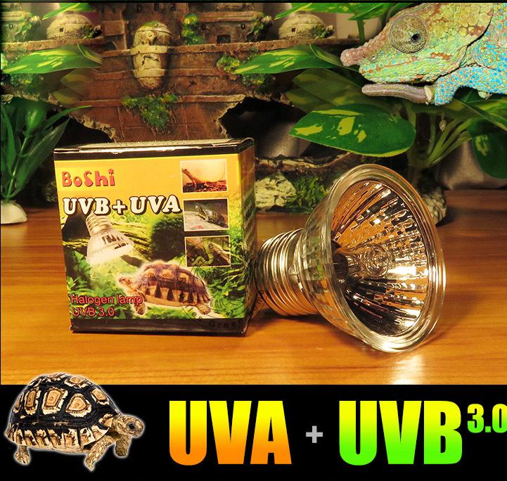 Sunning Heat Lamp 25~75 Watt Bulb, emits a broad-spectrum light, Provided A Basking Lamp Reptiles, Amphibians, And other Animals(China (Mainland))