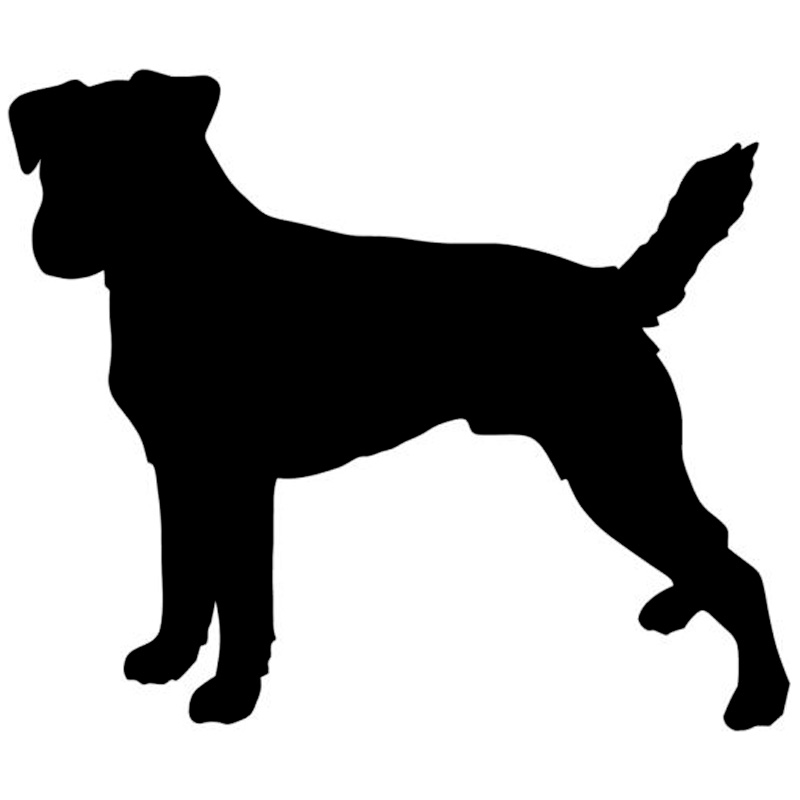 11.4*9.7CM Russell Terrier Parson Car Styling Stickers Cute Animal Window Decal Car Accessories C6-0137(China (Mainland))