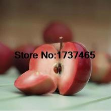 Buy 10pcs/lot Malus domestica,Fruit Plant Red Apple Seed Healthy Non Transgenic Fruit Budding Rate 90% home garden free for $1.12 in AliExpress store
