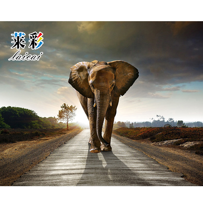 Painting On Canvas Animal Picture Wall Decor Modern Canvas Art Wall Pictures For Living Room Descorative Pictures 50X40cm Hot(China (Mainland))