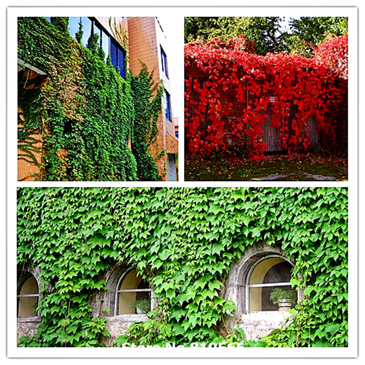 Online Buy Wholesale Outdoor Artificial Plants From China