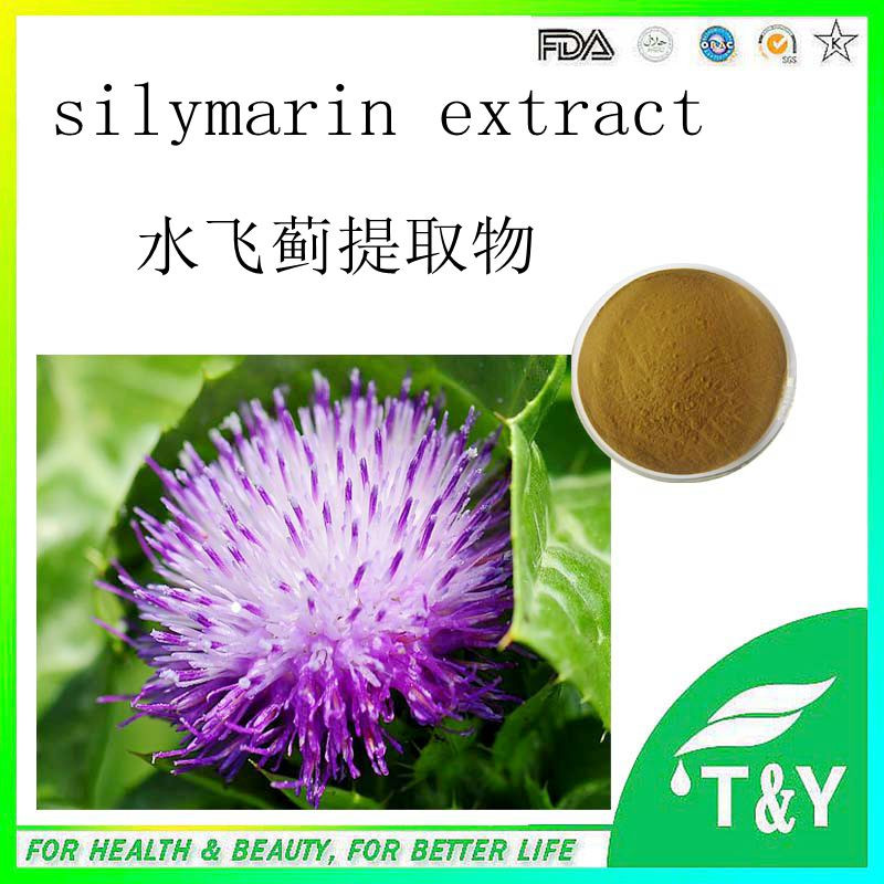 Factory Supply Silymarin Milk Thistle Extract  800g/lot<br><br>Aliexpress
