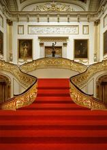 golden luxury house theme studio backdrop stairs with red carpet background photo digital cloth f-5729