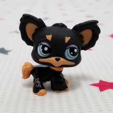 Lovely Pet shop animal LPS action figure doll Brown Black Chihuahua Puppy Dog #1571(China (Mainland))