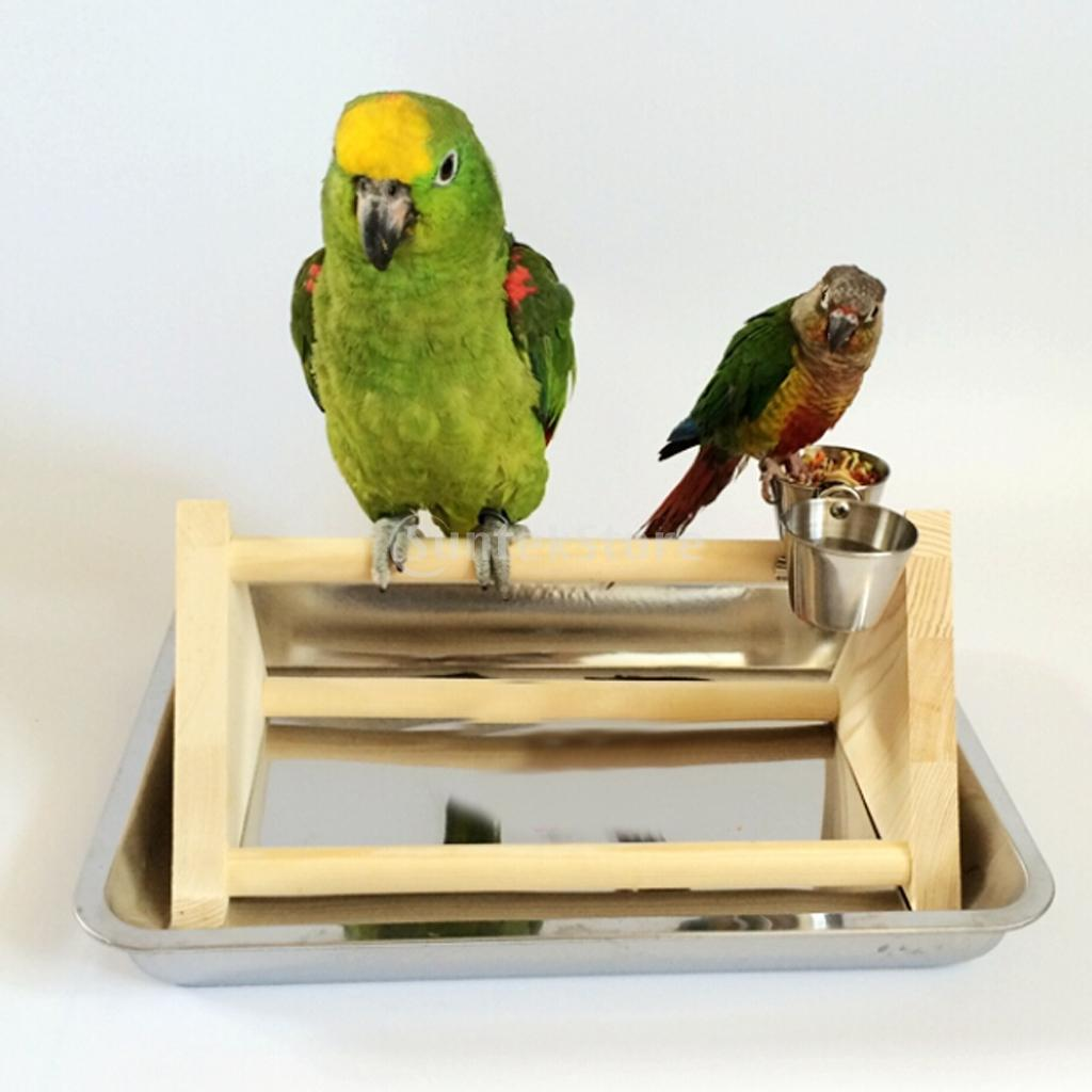 Toys For Birds : New arrivals wooden parrot stand bird standing toy