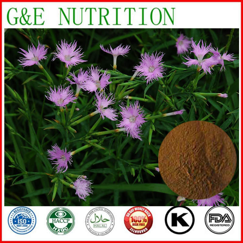 300g Hot Selling Dianthus superbus/ Fringed pink/ Pink Herb/Herba Dianthi Extract with free shipping<br><br>Aliexpress