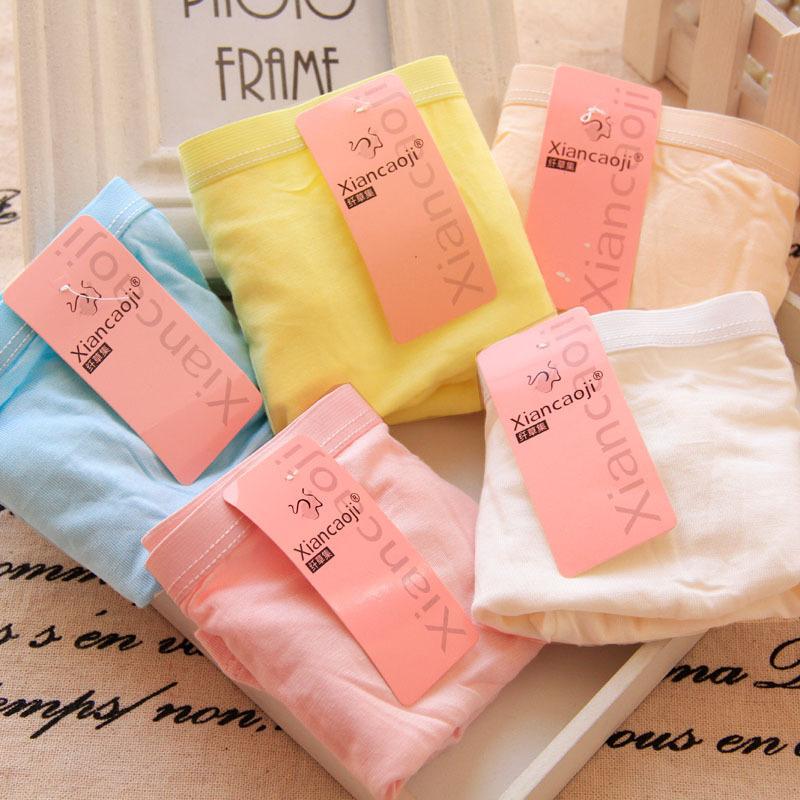 Grass fiber set ladies underwear solid net color boxer underwear anti safety briefs(China (Mainland))