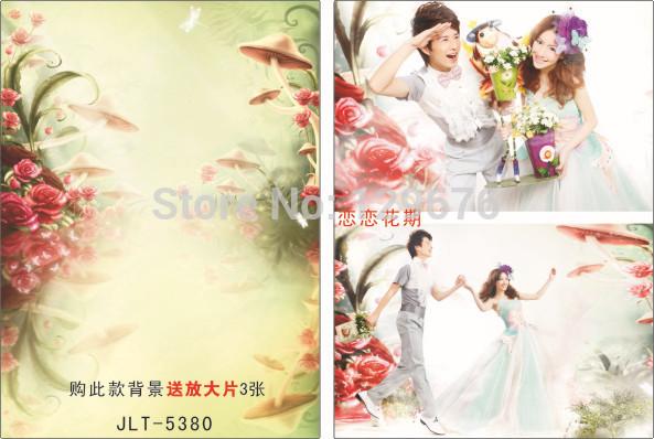 3m*5m Wedding Dress Photography Backdrops Vinyl Custom Photo Studio Background  JLT-5380<br><br>Aliexpress