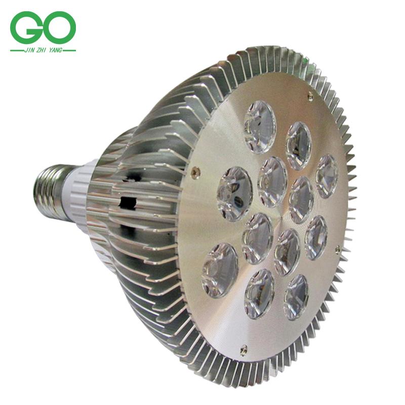 LED Spotlight 24W E27 PAR38 12x2W Warm Cool Natural White Spot Light Lamp 85-265VAC Downlight Track lights Indoor Lighting - Shenzhen Golden Ocean Co.,Ltd store