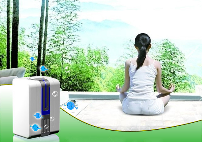 Portable Negative Ion Anion Air Purifier Air Cleaner Oxygen Bar Purify Air Kill Bacteria Virus Ionizer Universal Plug(China (Mainland))