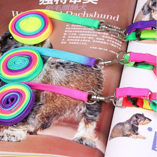 leash for pet multicolor pets collars leather pet products new lovely colorful rainbow color cat dog accessories walking harness(China (Mainland))