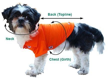 measuringdog
