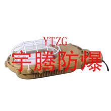 YTW610 (SBD) explosion-proof maintenance-free LED energy saving lamp(China (Mainland))