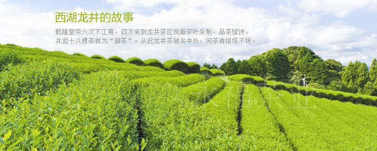120g 2015 Newest Autumn China west lake longjing tea premium Dragon Well Tea green tea Chinese Healthy Skin Care Weight Loss