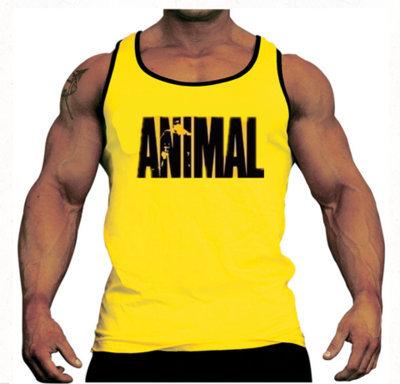 bodybuilding!gym vest Brand sport tank bodybuilding workout mens undershirt fitness men tank tops singlets Plus size XXL gasp(China (Mainland))
