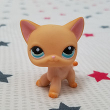 cute toys Lovely Pet shop animal figure Standing Cat Leopard Moon blue Eyes Short Hair kitty