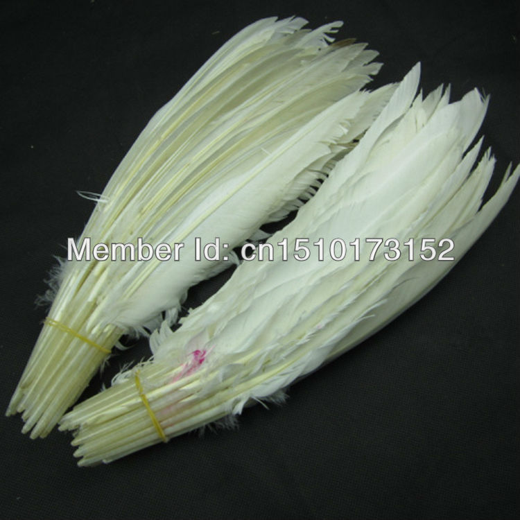 5 Loose White Hard Rod Goose feathers Crafts IB-1  -  TiTi Feather Market store