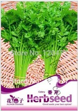 Vegetables  parsley, Parsley seeds, vegetable seeds, about 60 particles(China (Mainland))