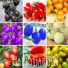 Big Promotion!9 Kinds Of Cherry Tomatoes Seed Fruits Seed Vegetables Potted Bonsai Potted Plant Tomatoes Seeds 100 Seeds/lot,#AG(China (Mainland))