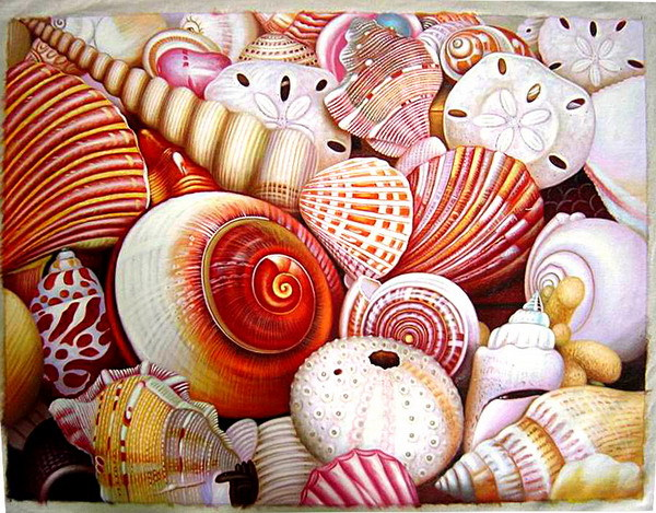 Free shipping Realism Sea Shells Hand Painted Oil Painting On Canvas TDS-XS016---60x90cm(China (Mainland))