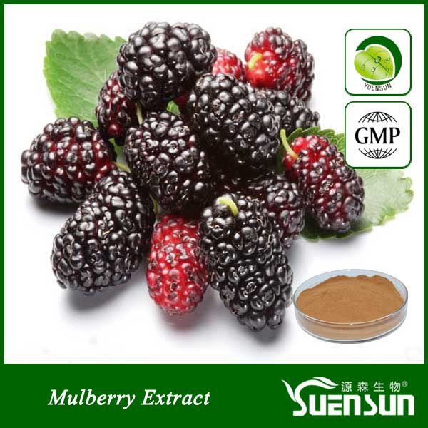 Organic mulberry extract powder mulberry powder Mulberry fruit powder