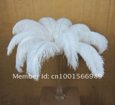 wholesale 10 PCS beautifu White ostrich feather 40-45 cm / 16 to 18 inches Wedding feather Made in China(China (Mainland))