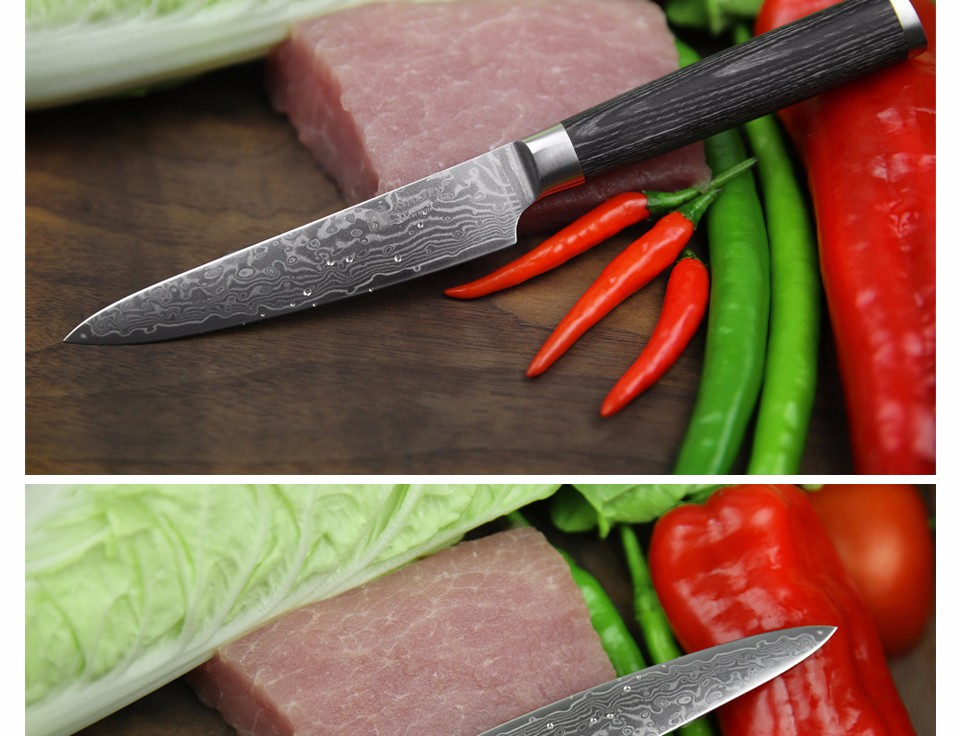 Buy XINZUO 5 inch utility knife 67 layers China Damascus steel kitchen knife  high quality sharp fruit paring knife Free shipping cheap