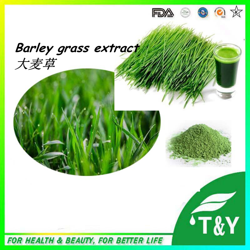 barley grass extract / wheat grass barley grass 100% Natural 500g/lot<br><br>Aliexpress