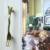 76mm Fork Style Antique Tableware Drawer Handles Cabinet Pulls Handle Kitchen Kids Bedroom Knobs Dresser Pull Handle pack of 10