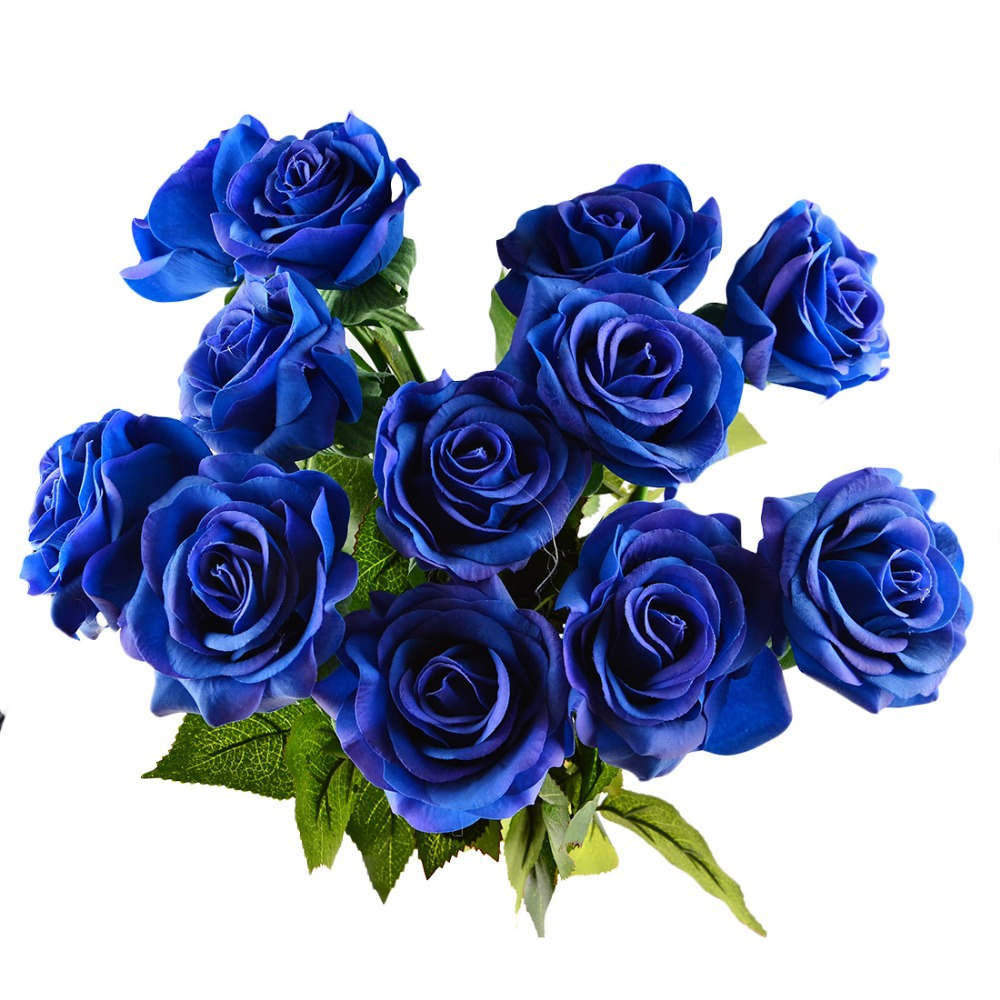 knumathise real blue roses for sale images