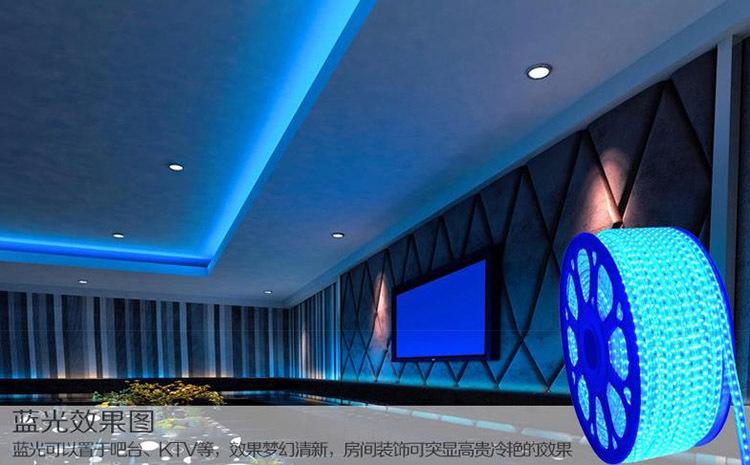Wholesale 60 SMD/M 5050 Led Flexible Strip 110v 220v 230v 240v White/Warm White/Red/BlueYellow/Red Waterproof Ip65 + Free Plug(China (Mainland))
