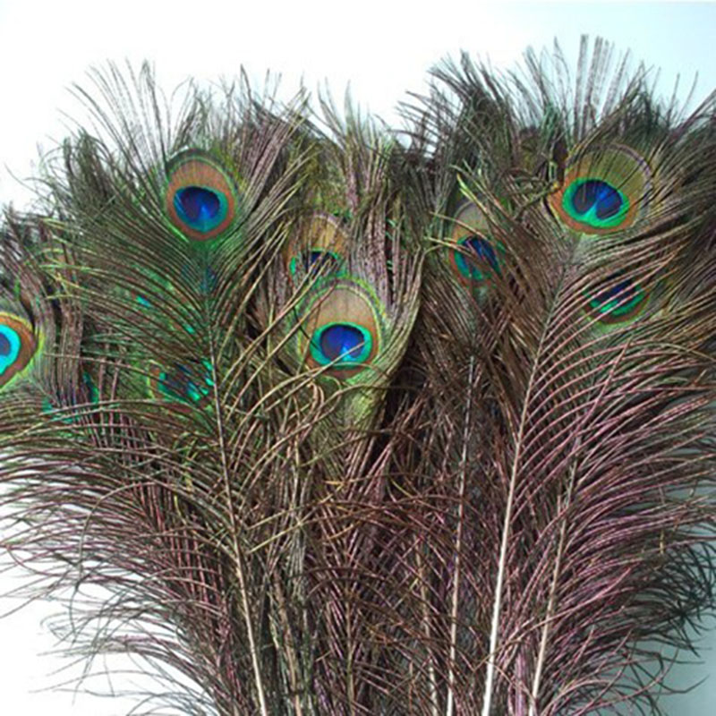 Popular peacock feather decorations buy cheap peacock for Where can i buy peacock feathers craft store