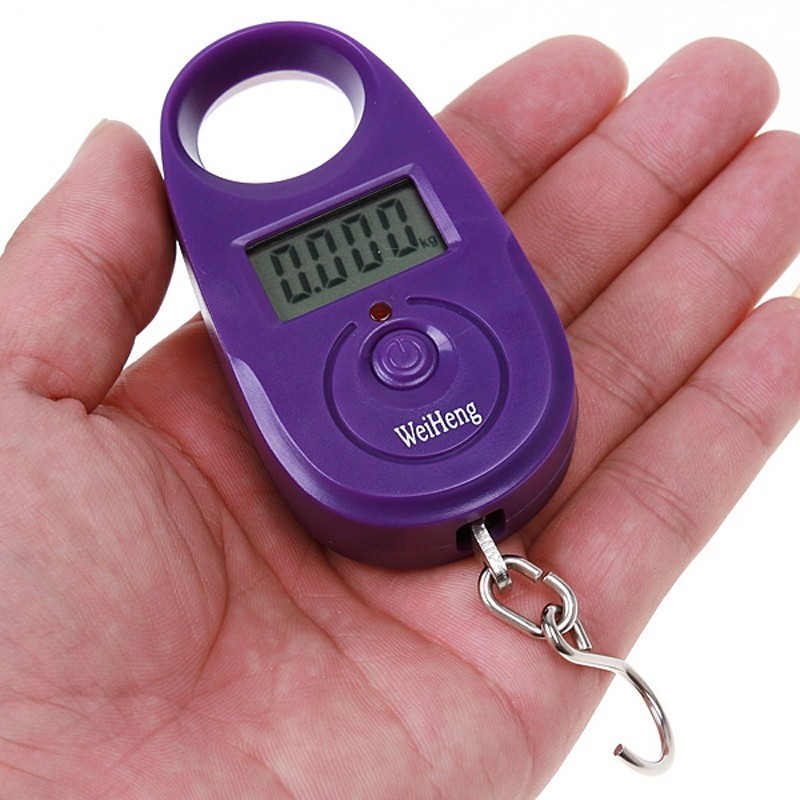 25Kg /5g Mini Digital Electronic Hanging Luggage Weight Scale Fishing Hook Weighing LCD Balance Scales Support  -  Bravo!! store