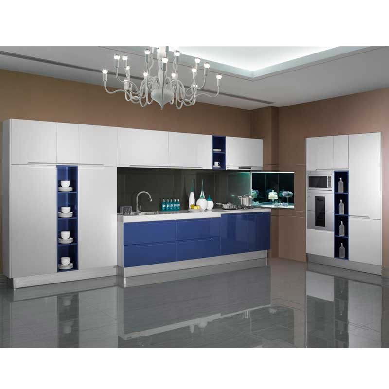 Cuisine moderne blanc laqu pourquoi choisir une cuisine for Ants in kitchen cabinets