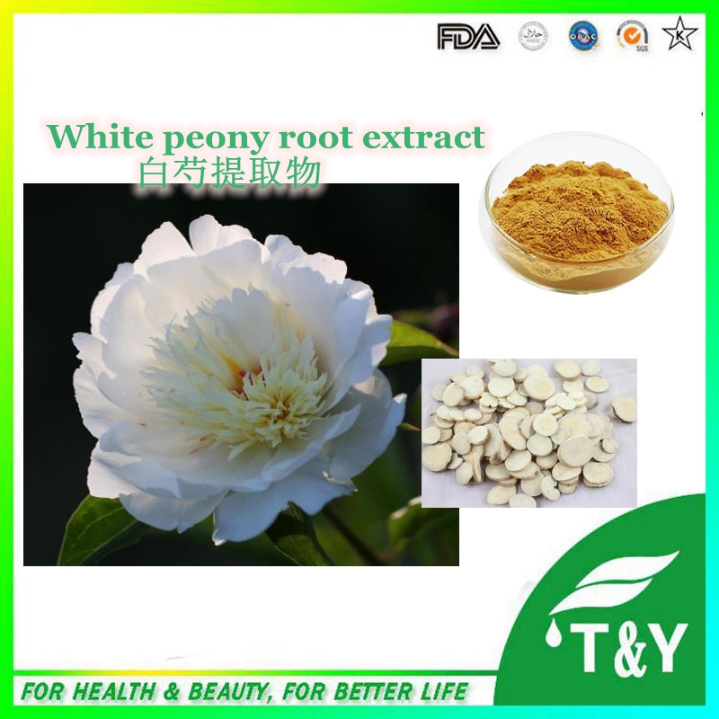 100% Natural white root peony extract/Paeonia lactiflora extract 600g/lot