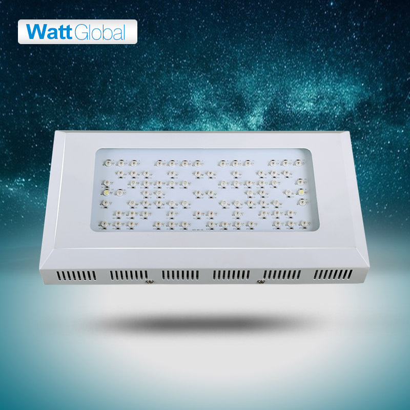 UPS free shipping white star ratio Led grow light 240W with 80pcs 3W,Warranty with 3years,dropshipping(China (Mainland))