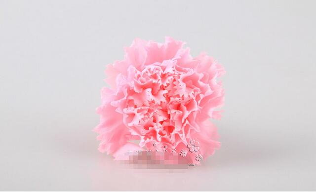Free shipping,12pcs/lot,3-4cm,preserved flower,DIY Eternal carnation .A grade quality teacher section Father 's Day carnations