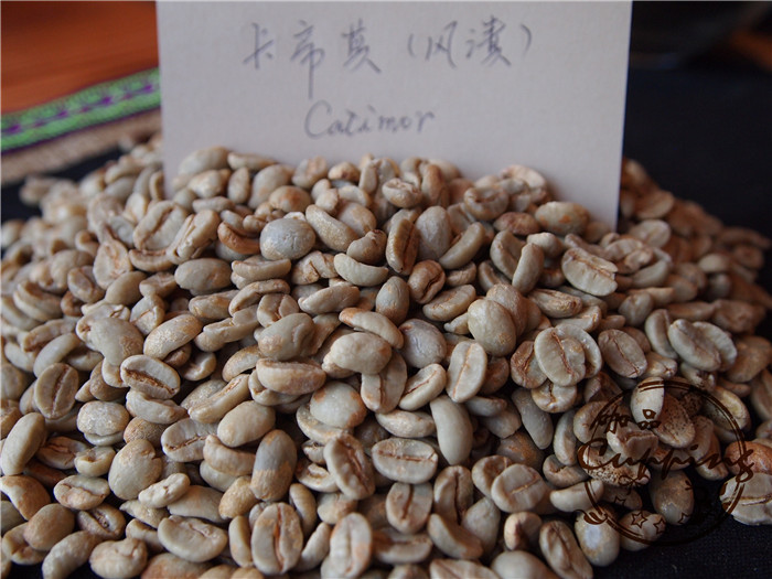 Free shipping 500g Cupping coffee beans green slimming coffee lose weight