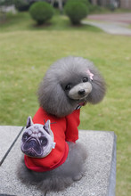 Buy A35 dog autumn winter cotton velvet Sweatshirts --bag design pet clothing pet dog winter clothes for $4.95 in AliExpress store