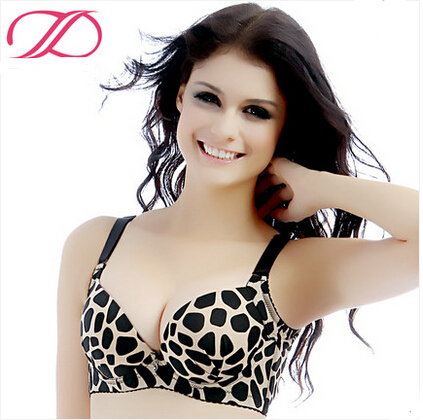 Free shippingWinter smooth small breasts leopard grain sexy gather thick bra underwear vice milk together(China (Mainland))