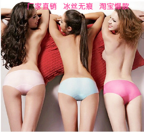 Hot New Women's Underwear Panties Seamless Modal Bamboo fiber Underwear Comfortable Silk 11 Colors Sexy Underwear Freeshipping(China (Mainland))