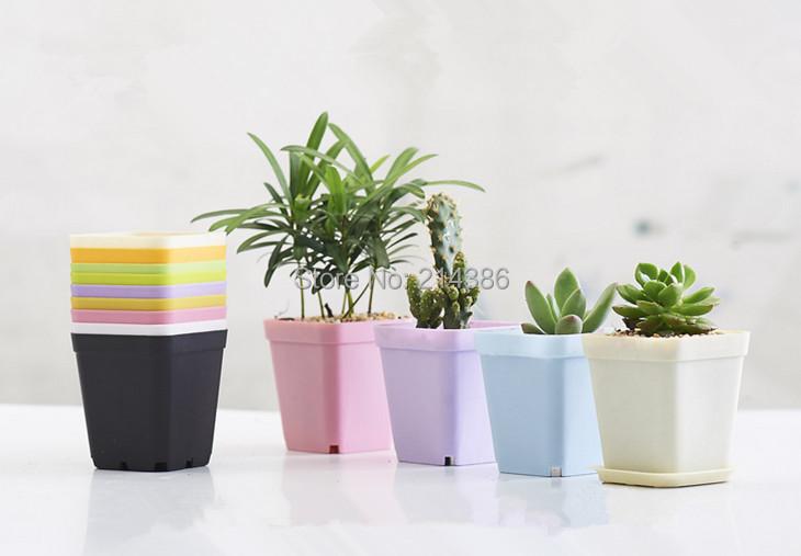 Multicolor mini square plastic vase tray gardening succulents bonsai planter nursery flowerpots 1 - jackie store