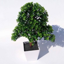 Artificial plants bonsai for Home Decorative artificial plastic trees Artificial flowers for decoration Imitation potted holly(China (Mainland))