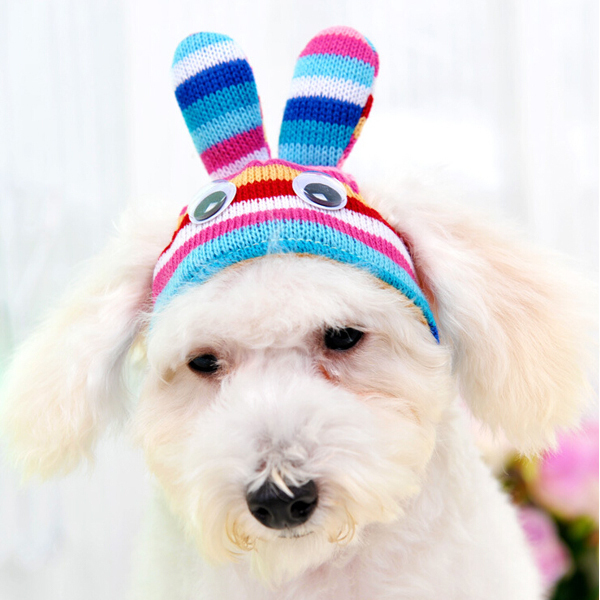 2015 Taiwan Fashion Design Winter Hats for Dogs Big Eyes Colorful Striped Rabbit Ears Knit Hat Dog Cap Pet Shop 3 Colors S/M/L(China (Mainland))