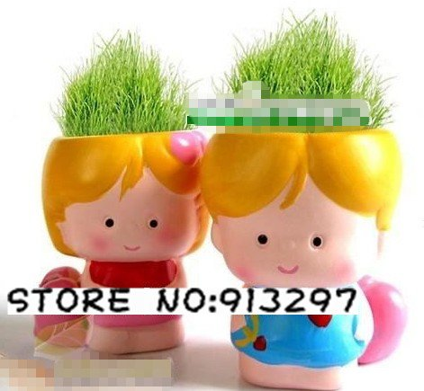 wholesale retail Gift girl boy lover Hair man Plant Bonsai Grass Doll Office Mini Plant Fantastic Home Decor pot+seeds 6 design(China (Mainland))