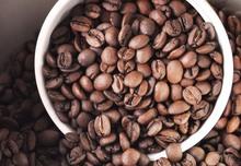 New 227g Brazil Minas Y Bourbon Natural Santos Coffee Beans Fresh Baking Original green food slimming