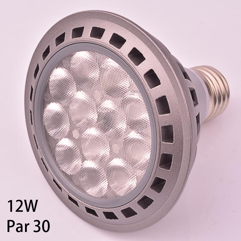 1 pieces only par led par30 12W led lamp bulb led spotlight bulb 12pcs 3030 high power leds par30 e27 spot lamp(China (Mainland))